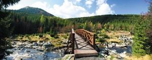 Trzeci most jest drewniany (Fot. Waldemar Koczewski)
